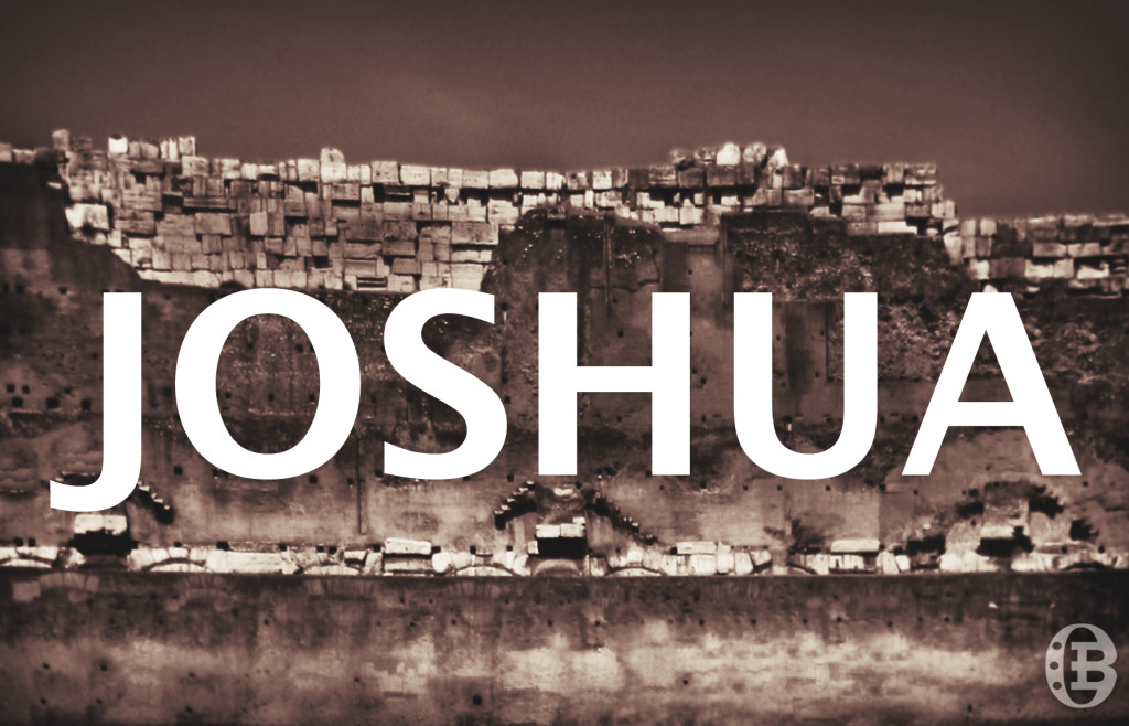 Joshua from OverviewBible.com site
