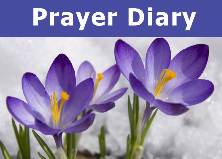 Prayer Diary Crocus